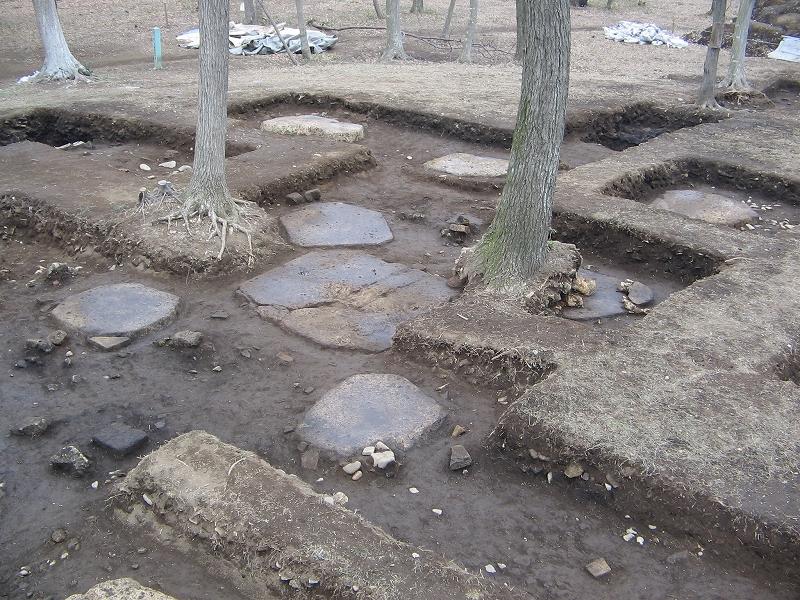 国分寺跡塔跡礎石の写真
